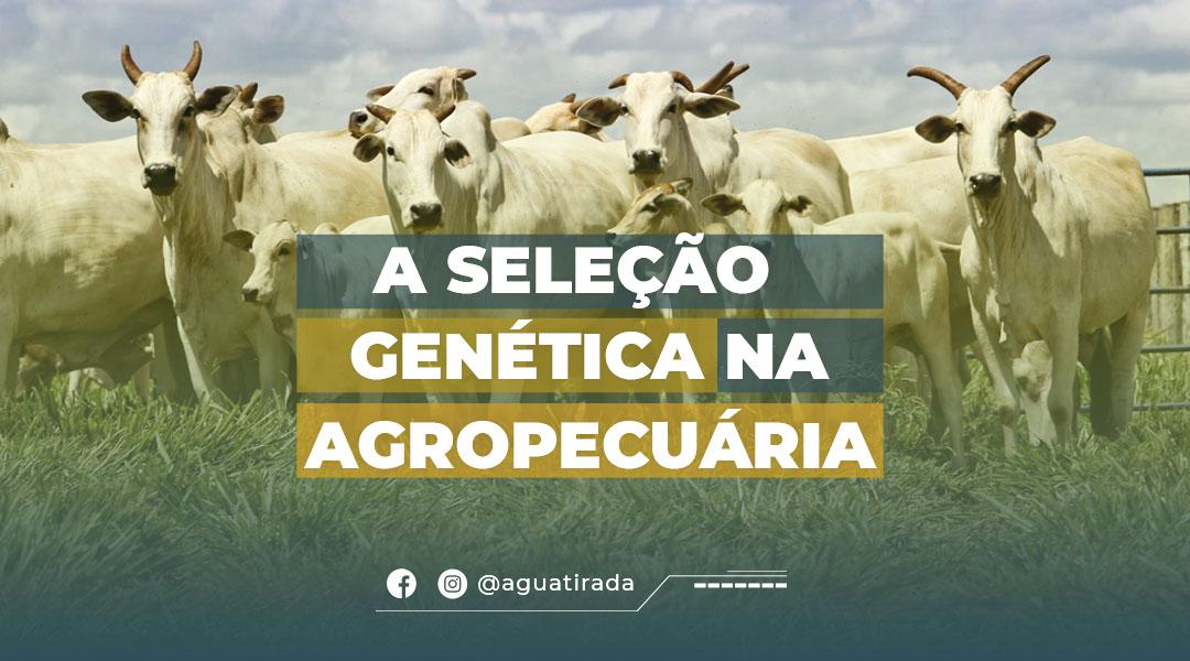 A Seleção genética  na Agropecuária