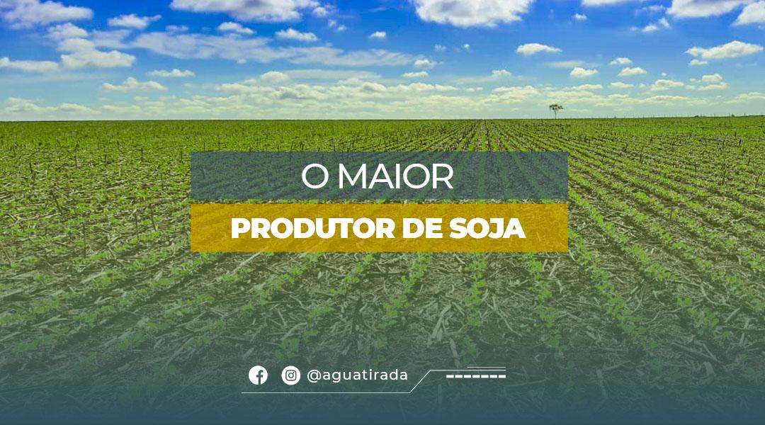 O maior produtor de soja