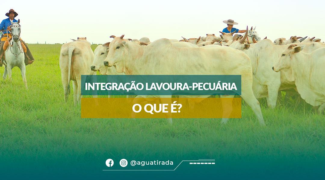 Integração Lavoura-Pecuária - O que é?