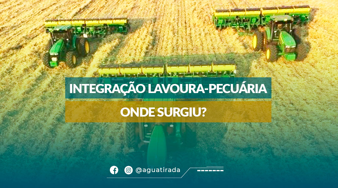 Integração Lavoura-Pecuária - Onde surgiu?