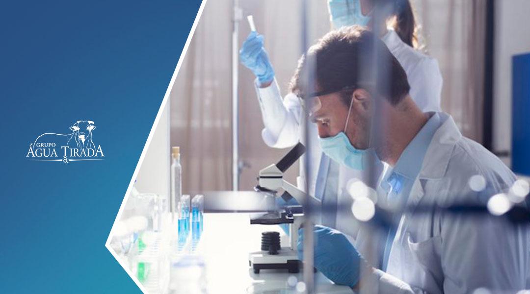 Qual a função da biotecnologia na Pecuária?